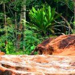 Fuja da rotina, a natureza estimula!  #ficaadrika